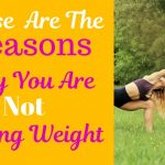 The main reasons you are not losing weight.