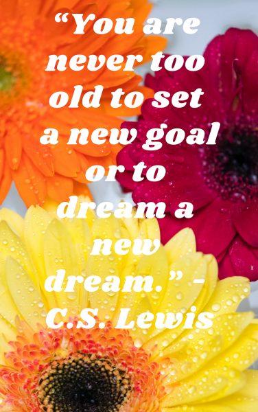 Keep dreaming and sertting neew goals