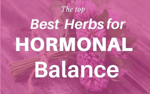 Top best herbs for hormone balance