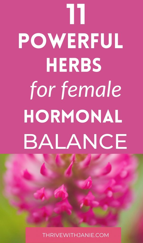 The best herbs for hormonal balance